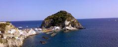 Traghetti e Aliscafi Ischia