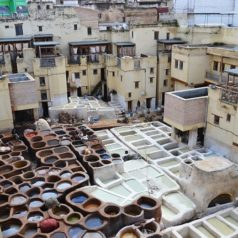 Cosa vedere in un weekend a Fes